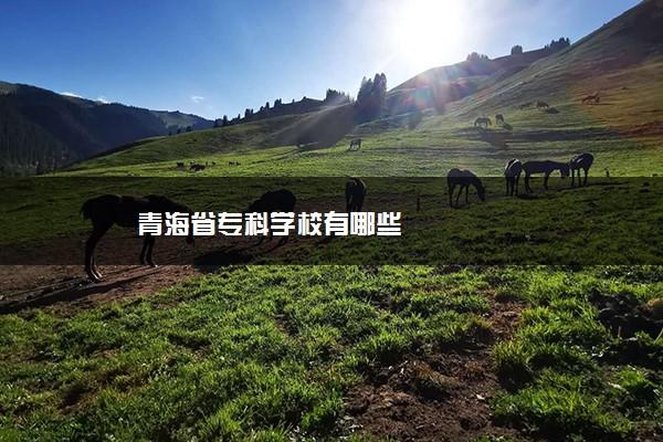 青海省专科学校有哪些