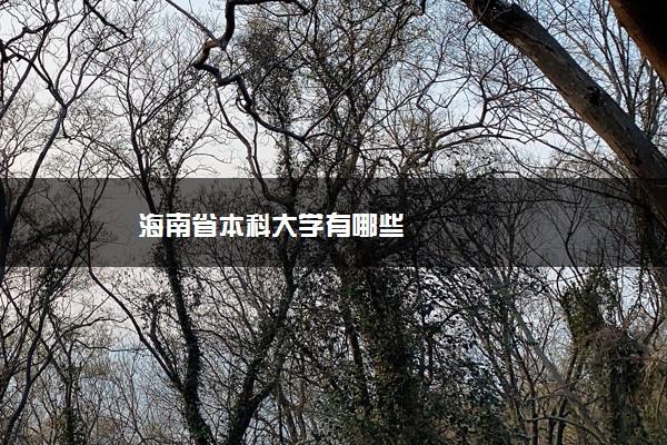 海南省本科大学有哪些