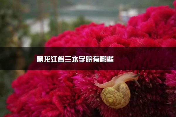 黑龙江省三本学院有哪些
