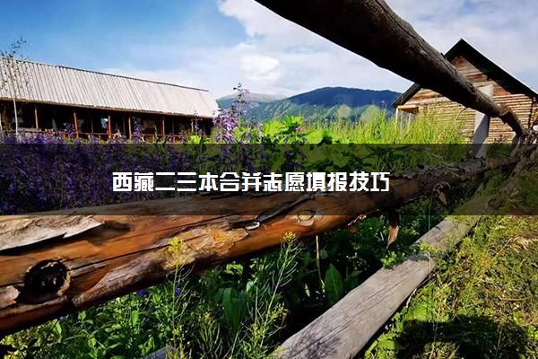 西藏二三本合并志愿填报技巧