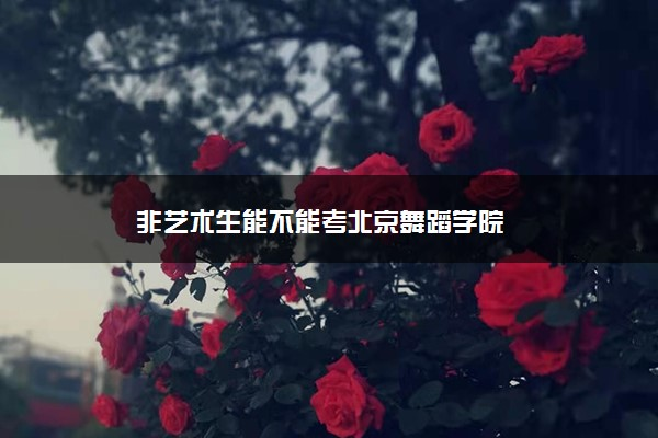 非艺术生能不能考北京舞蹈学院