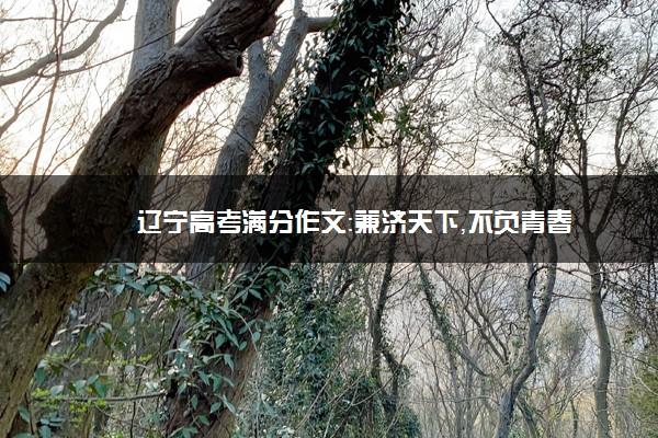 辽宁高考满分作文:兼济天下,不负青春