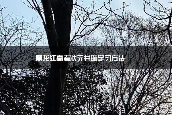 黑龙江高考状元井琳学习方法