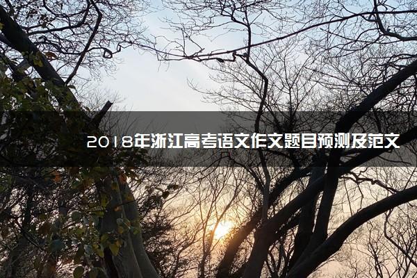 2018年浙江高考语文作文题目预测及范文