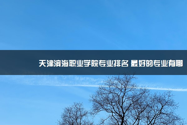 天津滨海职业学院专业排名 最好的专业有哪些