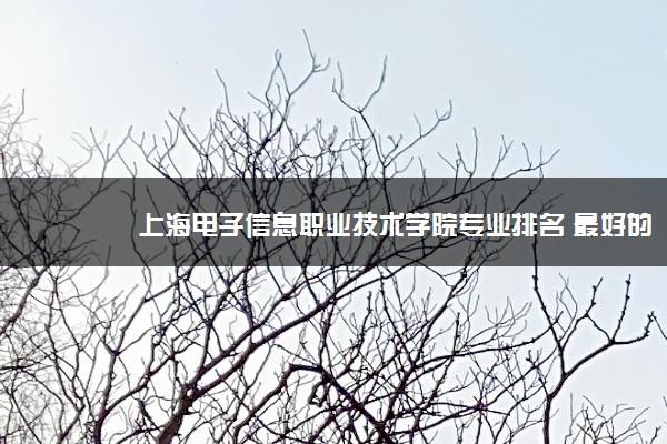 上海电子信息职业技术学院专业排名 最好的专业有哪些