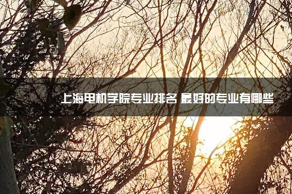 上海电机学院专业排名 最好的专业有哪些