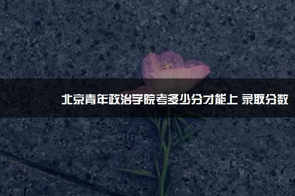 北京青年政治学院考多少分才能上 录取分数线是多少