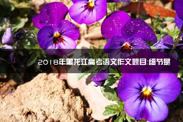 2018年黑龙江高考语文作文题目:细节是成功的开始