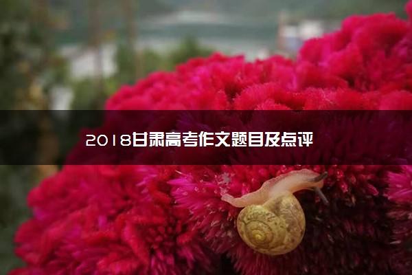 2018甘肃高考作文题目及点评