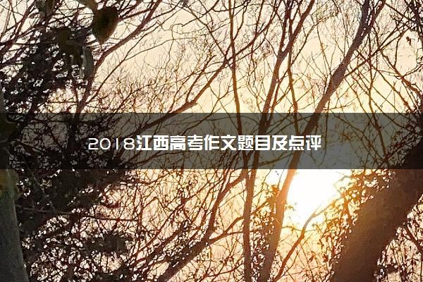 2018江西高考作文题目及点评