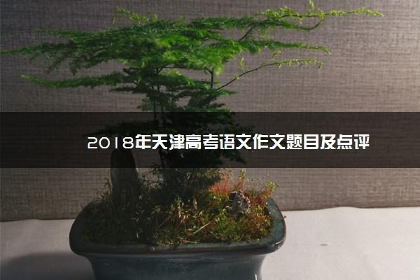 2018年天津高考语文作文题目及点评