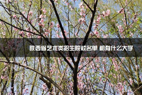 陕西省艺术类招生院校名单 都有什么大学