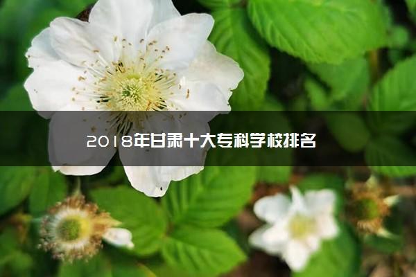 2018年甘肃十大专科学校排名