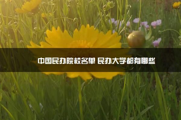 中国民办院校名单 民办大学都有哪些