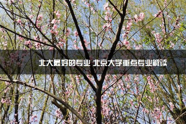 北大最好的专业 北京大学重点专业解读