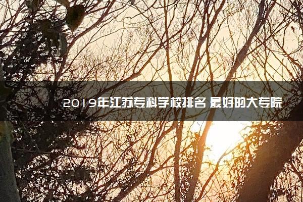 2019年江苏专科学校排名 最好的大专院校有哪些