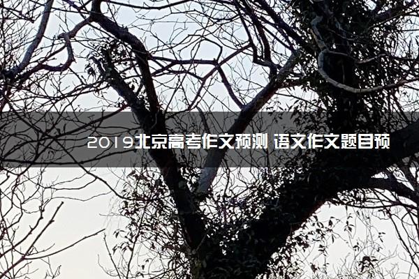 2019北京高考作文预测 语文作文题目预测及范文