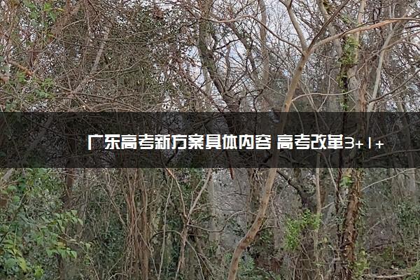 广东高考新方案具体内容 高考改革3+1+2模式