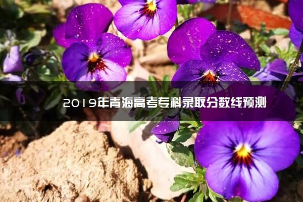 2019年青海高考专科录取分数线预测