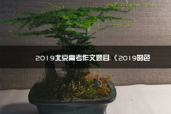 2019北京高考作文题目:《2019的色彩》和《文明的韧性》