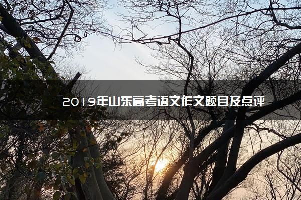 2019年山东高考语文作文题目及点评