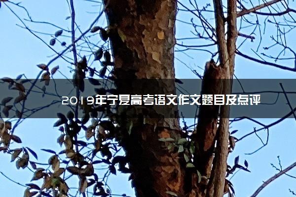 2019年宁夏高考语文作文题目及点评