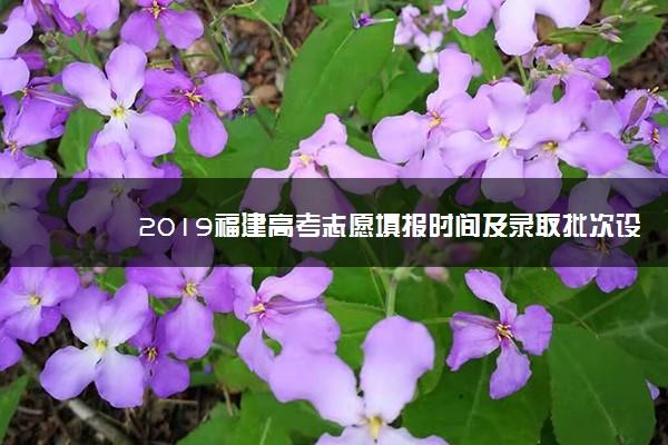 2019福建高考志愿填报时间及录取批次设置