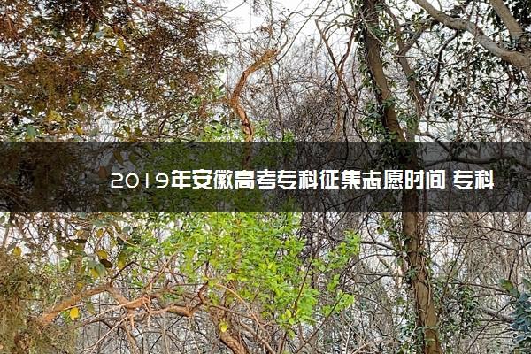 2019年安徽高考专科征集志愿时间 专科志愿什么时候征集