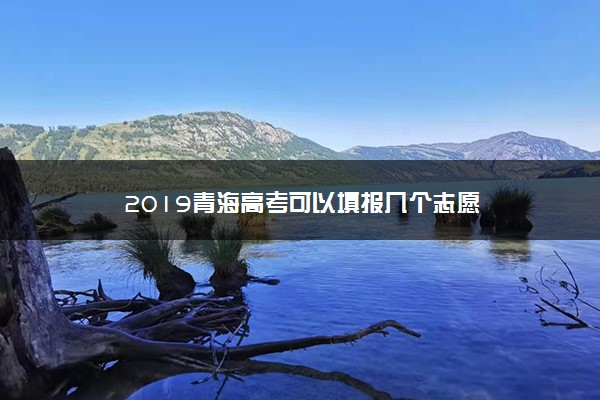2019青海高考可以填报几个志愿