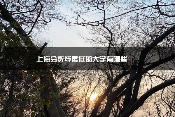 上海分数线最低的大学有哪些