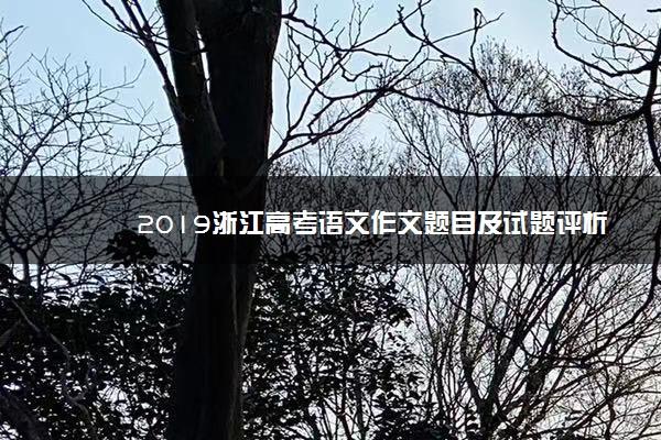 2019浙江高考语文作文题目及试题评析