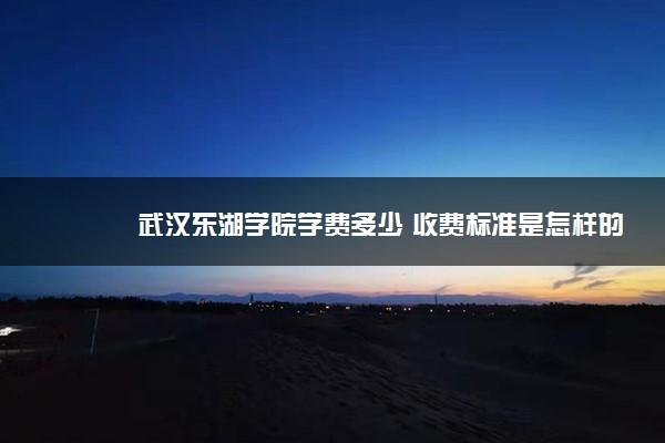 武汉东湖学院学费多少 收费标准是怎样的