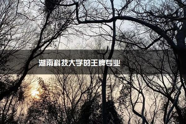 湖南科技大学的王牌专业