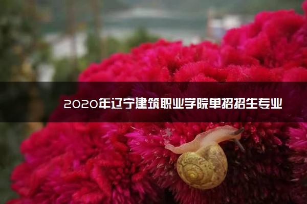 2020年辽宁建筑职业学院单招招生专业