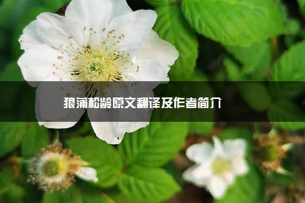 狼蒲松龄原文翻译及作者简介