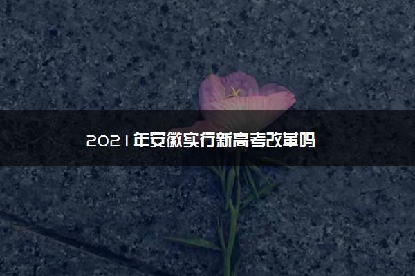 2021年安徽实行新高考改革吗