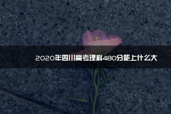 2020年四川高考理科480分能上什么大学 成绩480分能上的学校有哪些