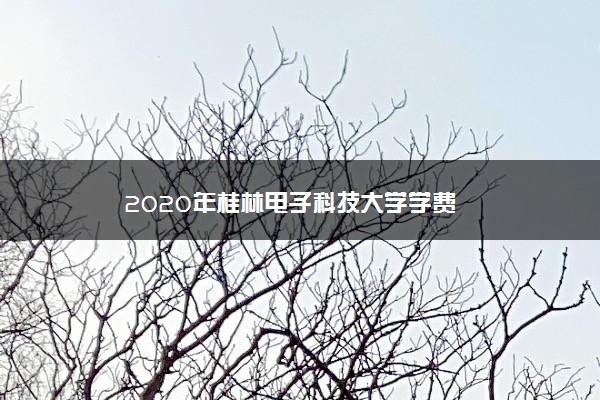 2020年桂林电子科技大学学费
