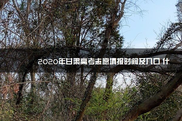2020年甘肃高考志愿填报时间及入口 什么时候报考