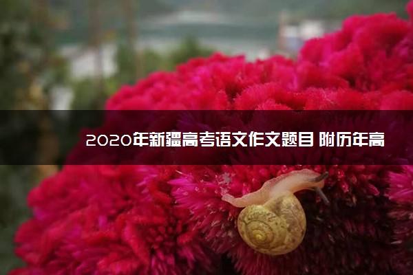 2020年新疆高考语文作文题目 附历年高考作文题目