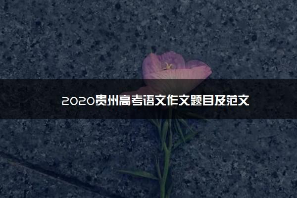 2020贵州高考语文作文题目及范文