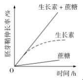 2020贵州高考理综试题及答案解析