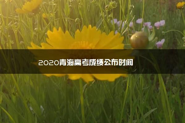 2020青海高考成绩公布时间