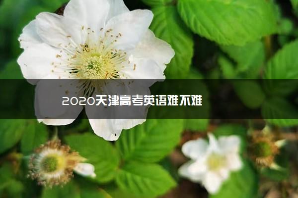 2020天津高考英语难不难