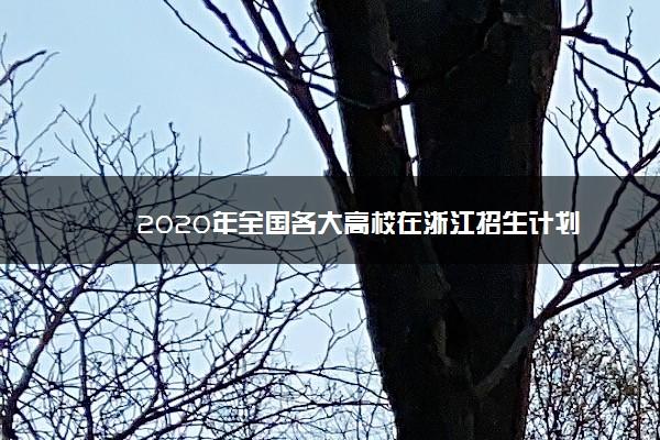 2020年全国各大高校在浙江招生计划