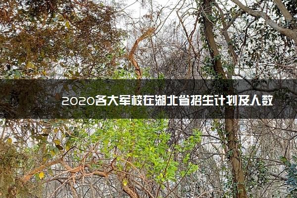 2020各大军校在湖北省招生计划及人数