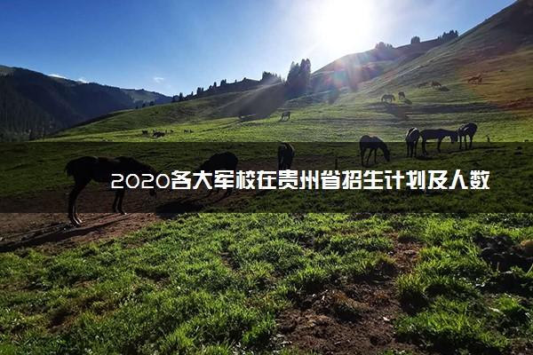 2020各大军校在贵州省招生计划及人数