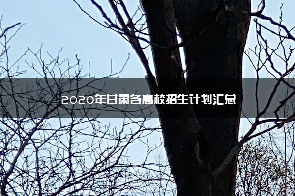 2020年甘肃各高校招生计划汇总