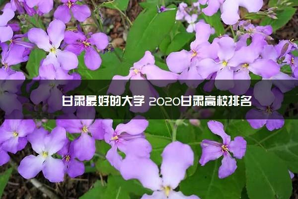 甘肃最好的大学 2020甘肃高校排名